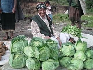Farmer /gardener