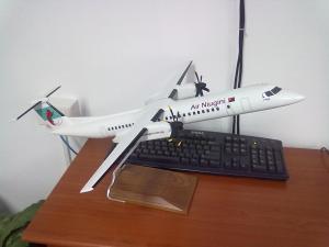 Model aeroplane at Air Niugini