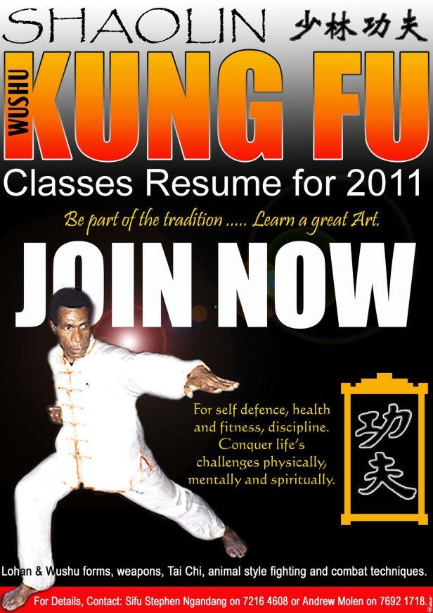 Shaolin Wushu Poster